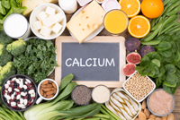 The Importance of Calcium and Phosphorous to the Body