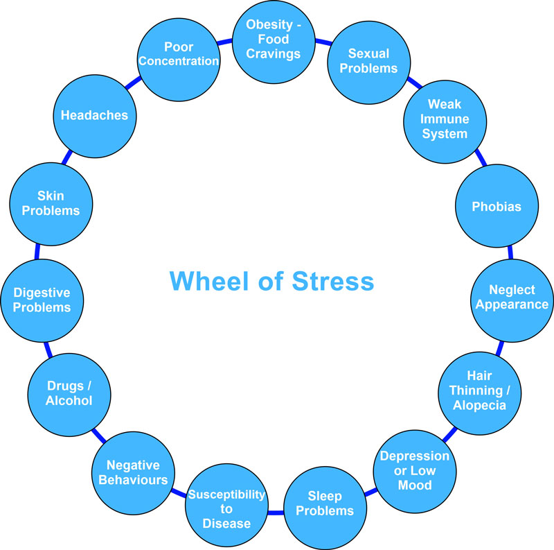 Wheel of Stress